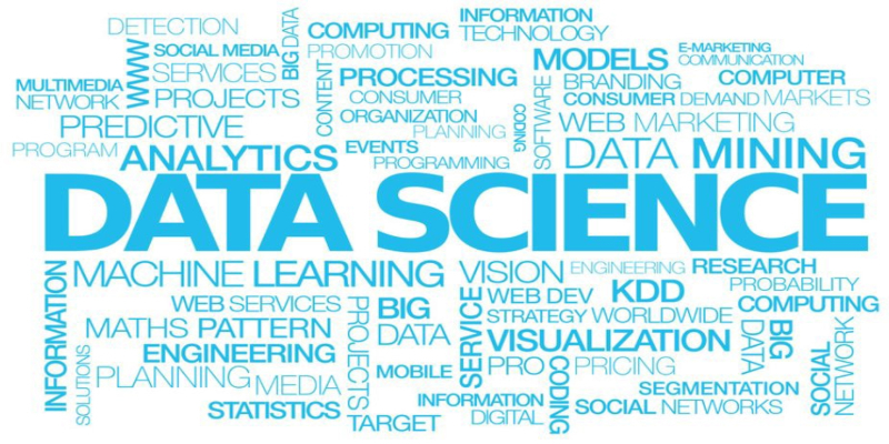 Does your company really need a Data Scientist?